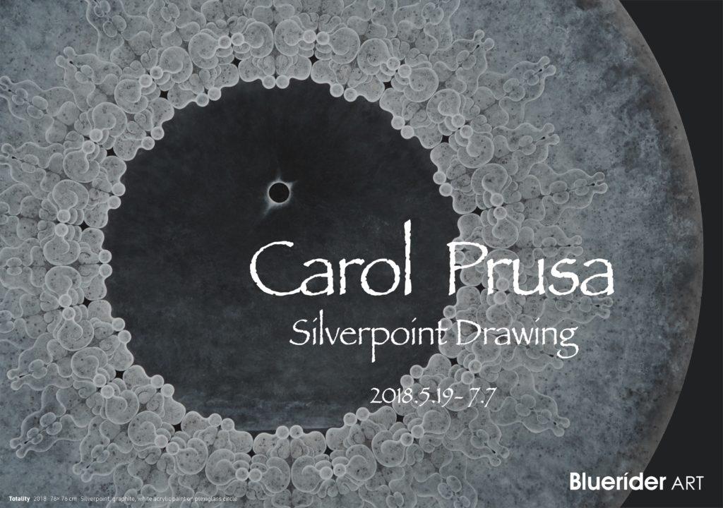Carol Prusa | Silverpoint Drawing