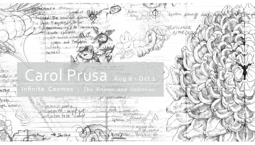 【台北・仁愛】Infinite Cosmos : The Known & Unknown – Carol Prusa 2016.8.6-2016.10.1