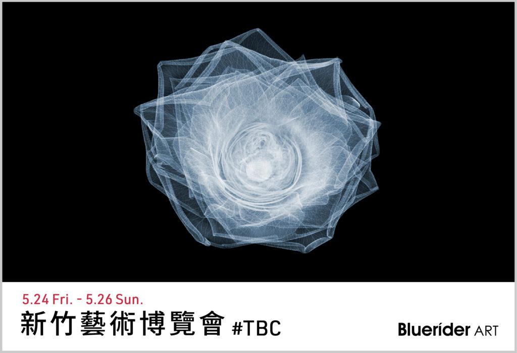 新竹藝術博覽會5.24-5.26
